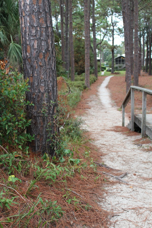 Walking the path to water's edge at Hilton Head, SC.