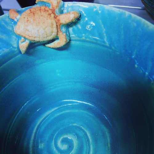 Turquoise pottery bowl with turtle found in Beaufort, South Carolina
