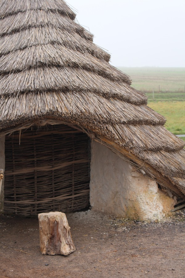 Layers of thatching