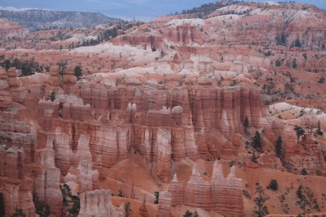 Valley of hoodoos -- Bryce Canyon National Park