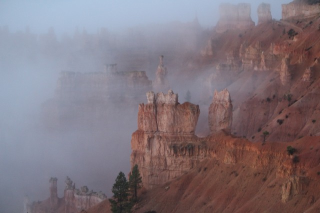A morning reveal at Bryce Canyon