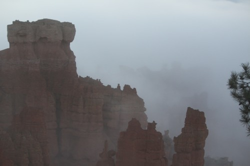 Fog lifting over Bryce Canyon
