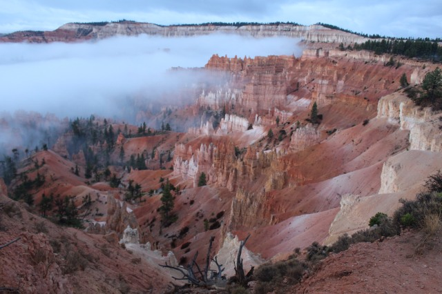 The view behind The Lodge at Bryce Canyon