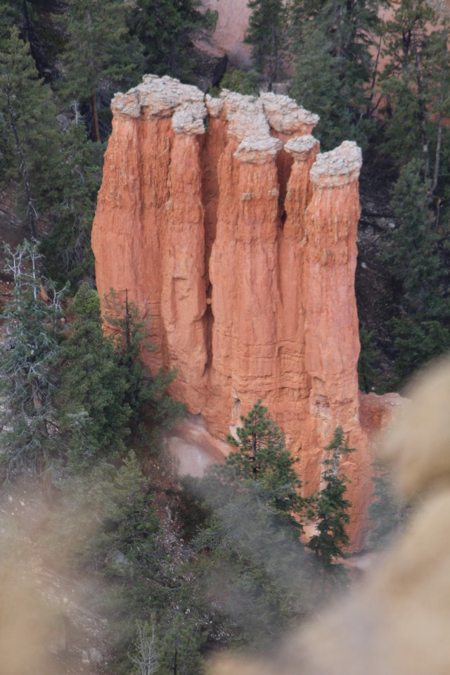 Shaped by erosion: hoodoos at Bryce Canyon
