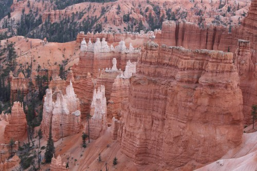 Variations in color, layers, and formations: Bryce Canyon National Park