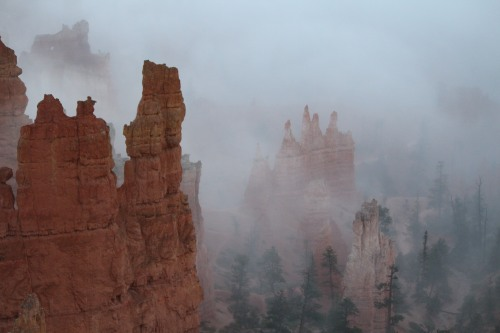 Morning fog at Bryce Canyon, Sunrise Point