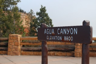 Rustic signs marking areas of Bryce Canyon