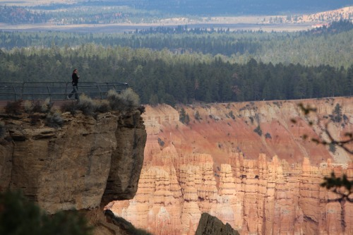 Walking to the edge for another great shot of Bryce Canyon!