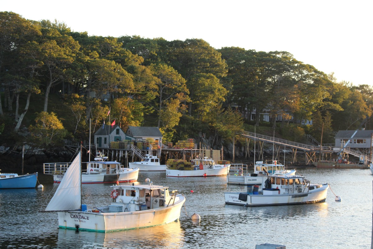 New Harbor: most photographed fishing village in Maine?  Could be!