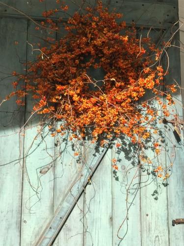 Stunning bittersweet wreath on the door at Marston House, Wiscasset, Maine.