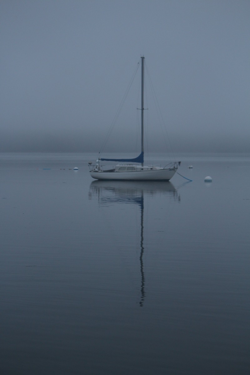 WPC:  Serene mornings in Maine