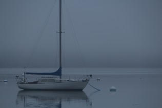 Still waters, foggy morning -- a boat awaits the day in Castine.