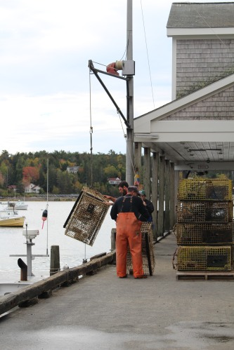 Lifting and stacking traps in Southwest Harbor, Maine