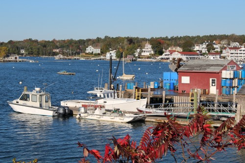 Rich colors: lobster boats in waiting at Boothbay Harbor, Maine