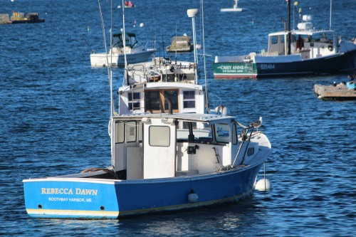 Headed out to check the traps in Southwest Harbor, Maine