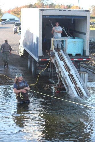 Sending lobster bins up the conveyor belt. Work's not done 'til the last one's in.