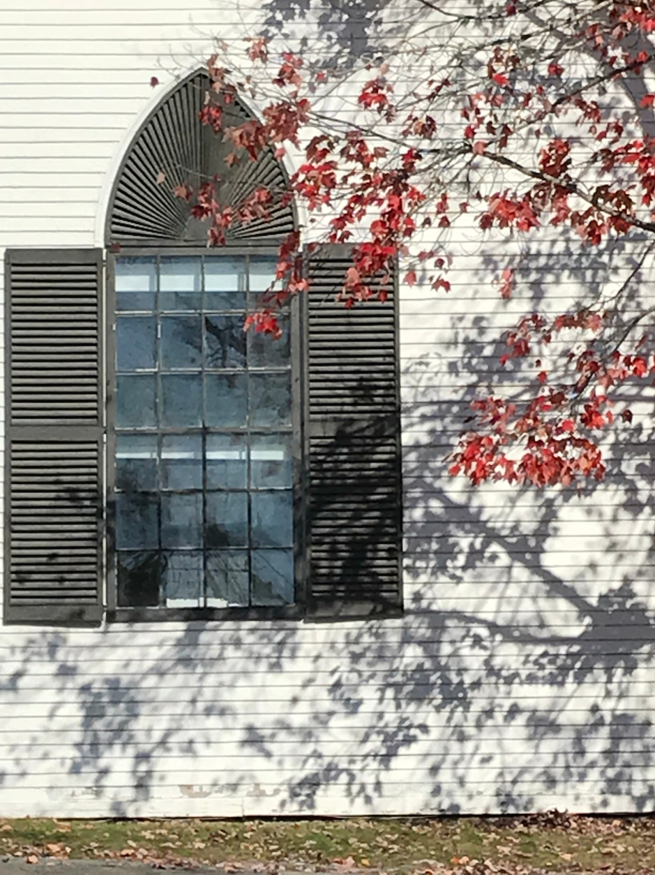 Autumn leaves form a lacy shadow on a home in Castine.