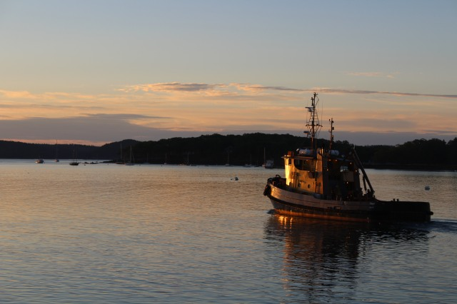 Leaving Acadia Dock before dawn is the Maine Maritime Academy tug awash in early-morning sunlight.