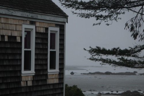 A glimpse through the fog in Spruce Head, Maine