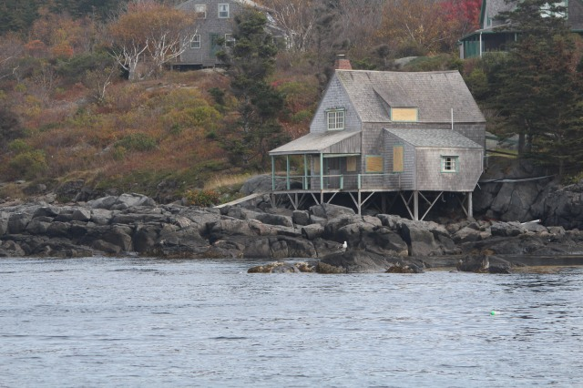 Sitting right on water's edge, a gray shingled house balances on sturdy legs.