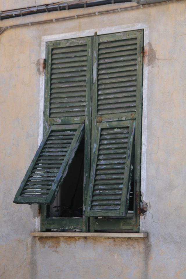 Green shutters:  Cinque Terre