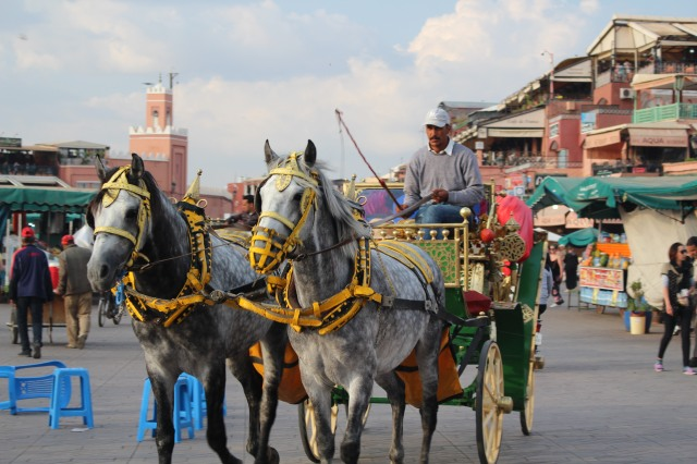 Mostly it's tourists who ride in horse-drawn carriages, but locals use them as well, especially in Jemaa el-Fnaa.