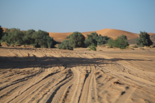 "The ""road"" from Merzouga to Erg Chebbi"
