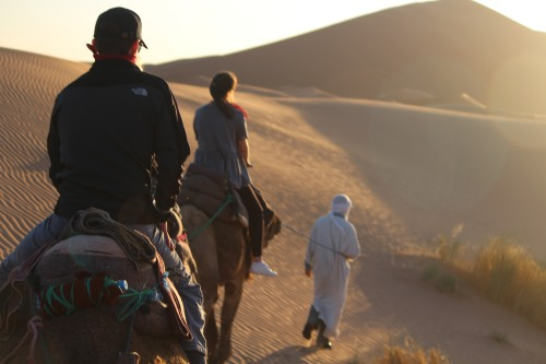 Camel riding in the Sahara: just do it!