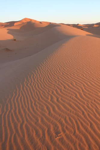 How's this for a screen saver shot of dawn in the Sahara!