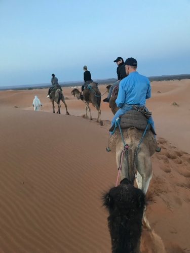 A camel caravan in the desert. (I'm number five, taking pictures from behind.)