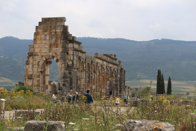 Roaming the remains of structures in Volubilis, Morocco