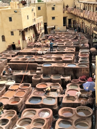 A balcony vantage point allowed us to see the whole operation at the Fez tannery we visited.